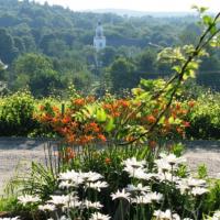 Nashoba Valley Winery & Orchard
